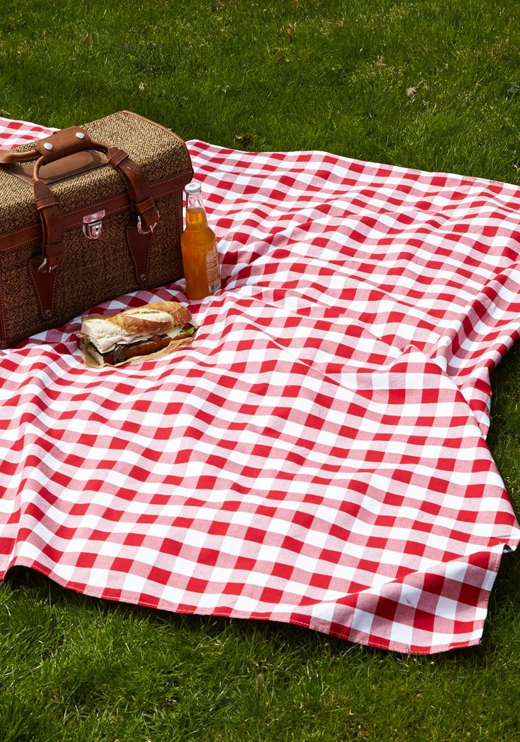 101-party-hire--picnic-blanket-hire